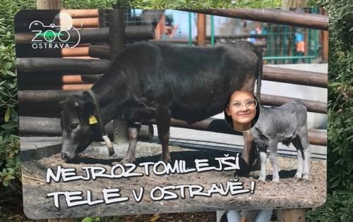 Třída 9.A v zoo v Ostravě f03