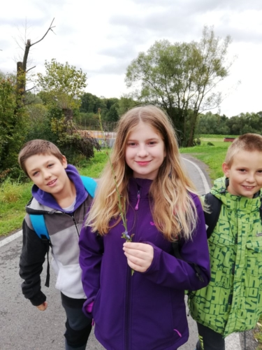 Podzimní Lučina jako učebna v přírodě f05