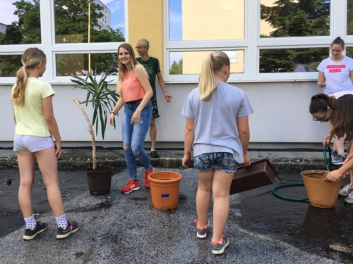 Žáci přesazovali pokojové rostliny f04